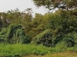 ที่ดินเปล่า 75 ตร.ว. ปากเกร็ด นนทบุรี